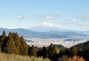 【満観峰】静岡市で登山・低山デビューなら満観峰がオススメ!