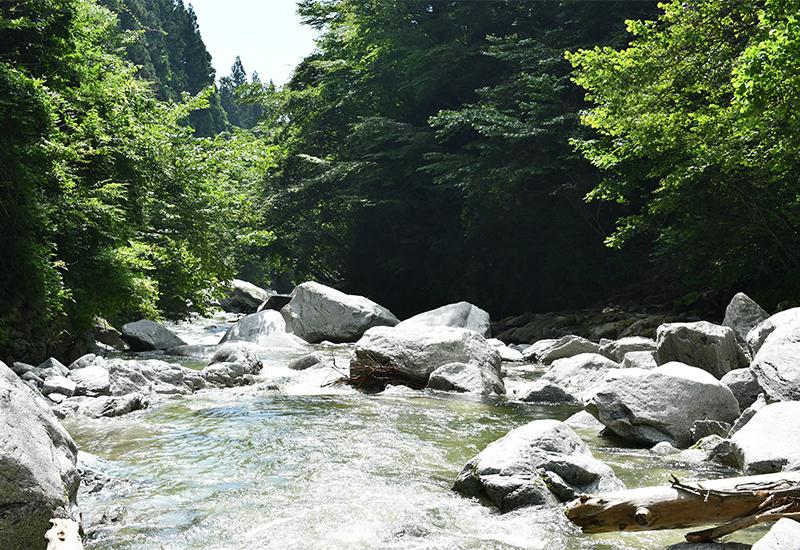 【気分は宇多田ヒカル】山梨の尾白川渓谷へ子どもとプチトリップ