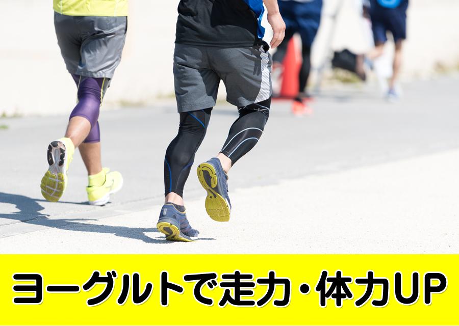 【250円で健康を生み出す宝箱】ヨーグルトメーカーがランニングライフを快適にする!
